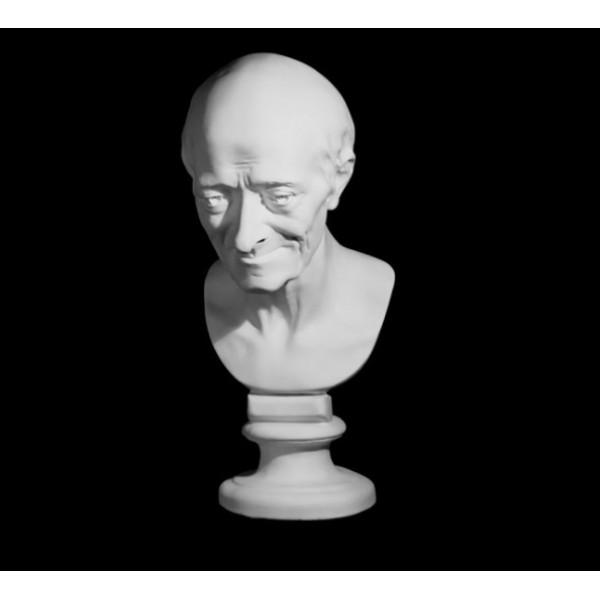 Ģipša galva Voltērs