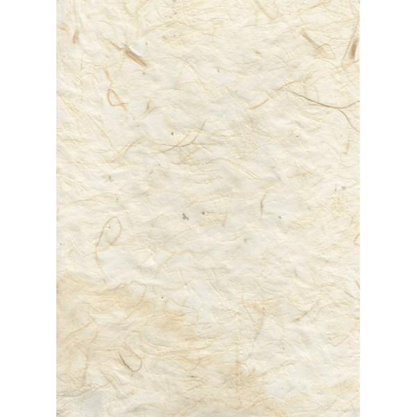 Nepālas papīrs  A4  Bēšas krāsas fons ar dabīgo šķiedru