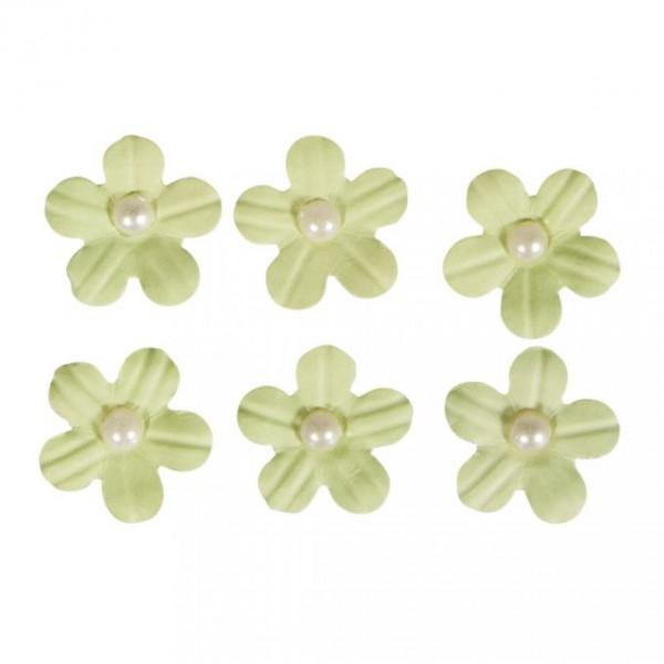 Pašlīmējošie ziedi; 20 gab; gaiši zaļš