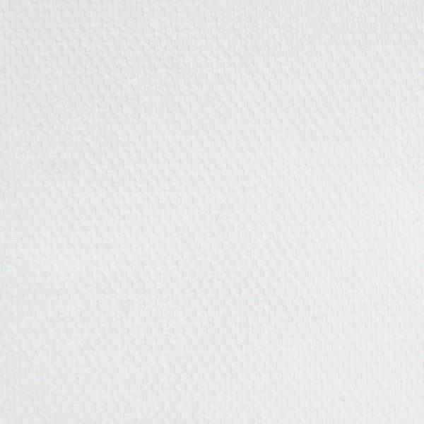 Eļļas krāsa Master Class, titāna balta, 101