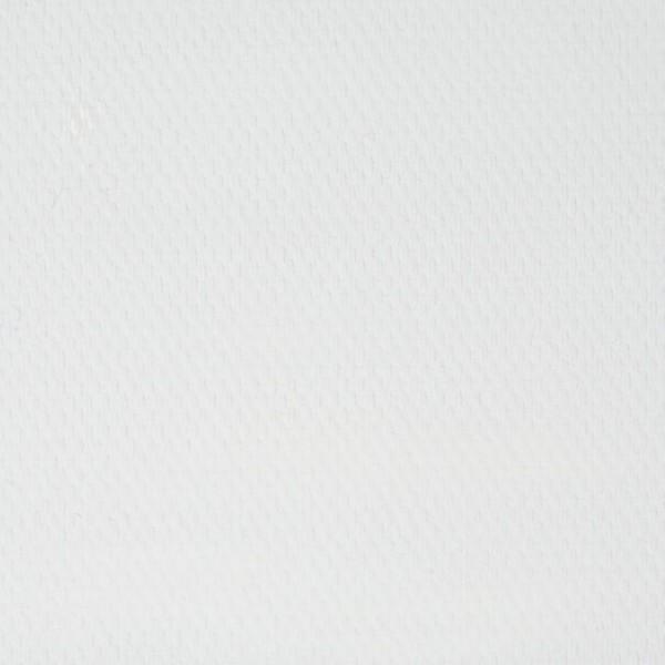 Eļļas krāsa Master Class, cinka balta, 100