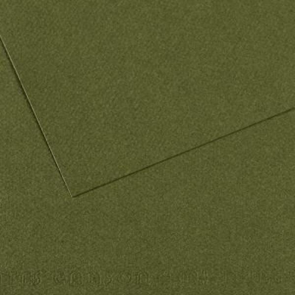 Pasteļpapīrs MT Canson, A4; 448 ivy