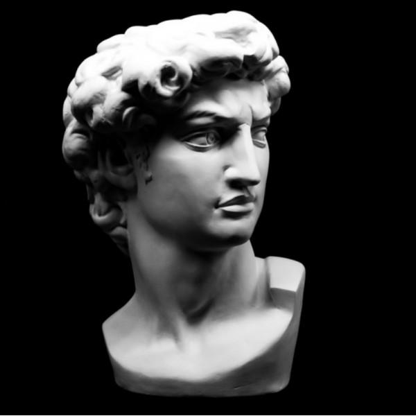 Ģipša galva Dāvids