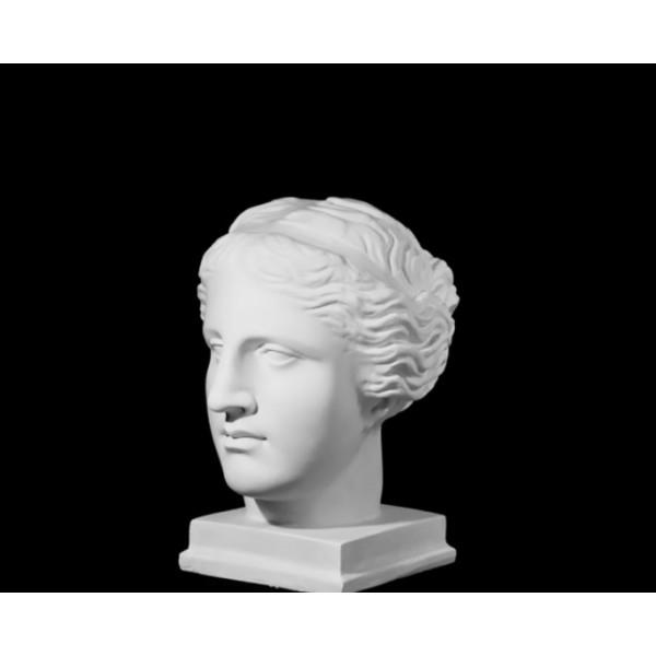 Ģipša galva Milosas Venēra